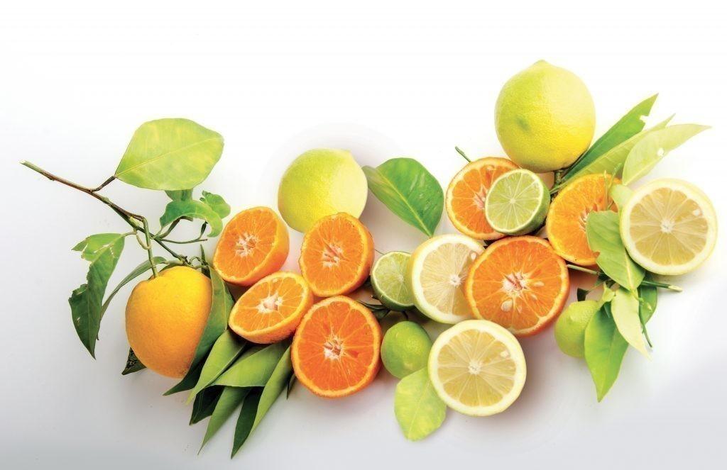 Mandarini-arance-e-limoni-01-1024x663